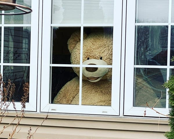 Sara Flick's giant teddy bear.