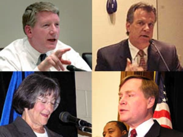 DFL candidates for governor