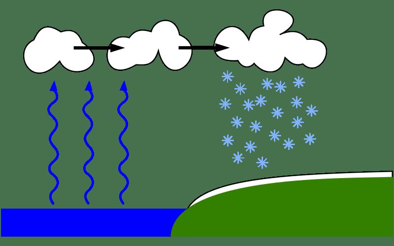 800px-Lake-derived-snow.svg