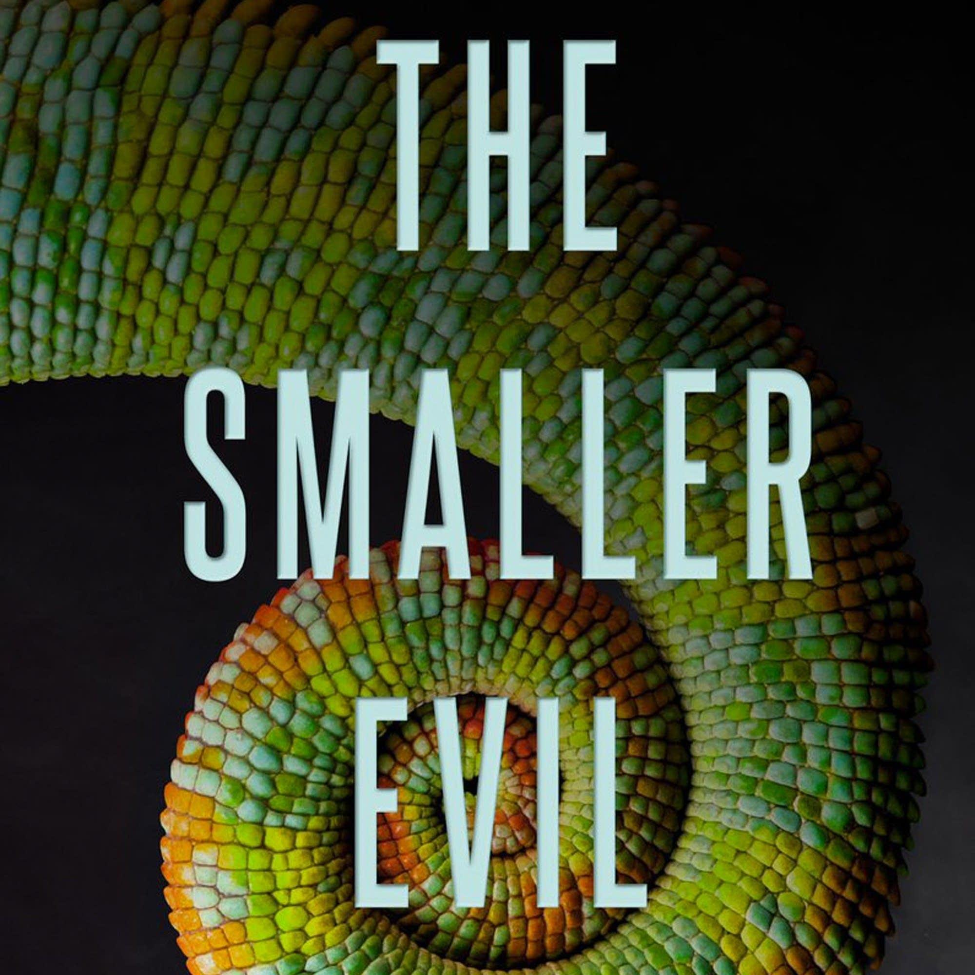 'Smaller Evil' by Stephanie Kuehn