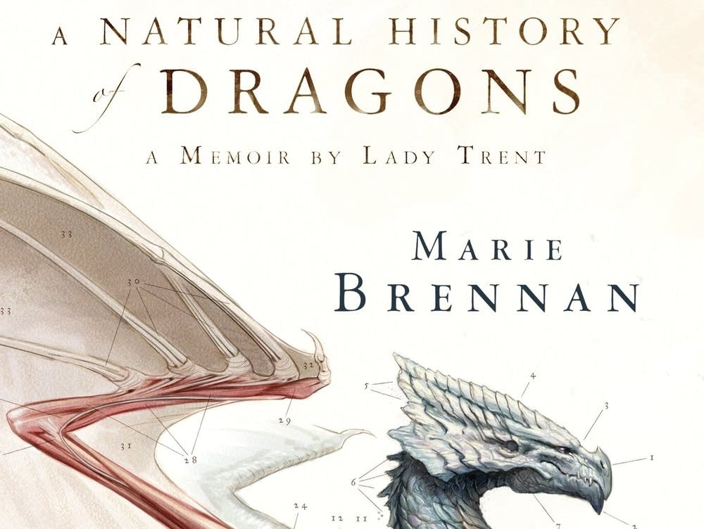 A very different dragon tale   MPR News