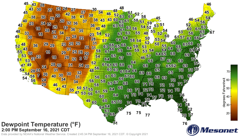 Dew points Thursday afternoon