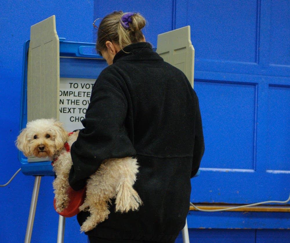 Voting in Merriam Park