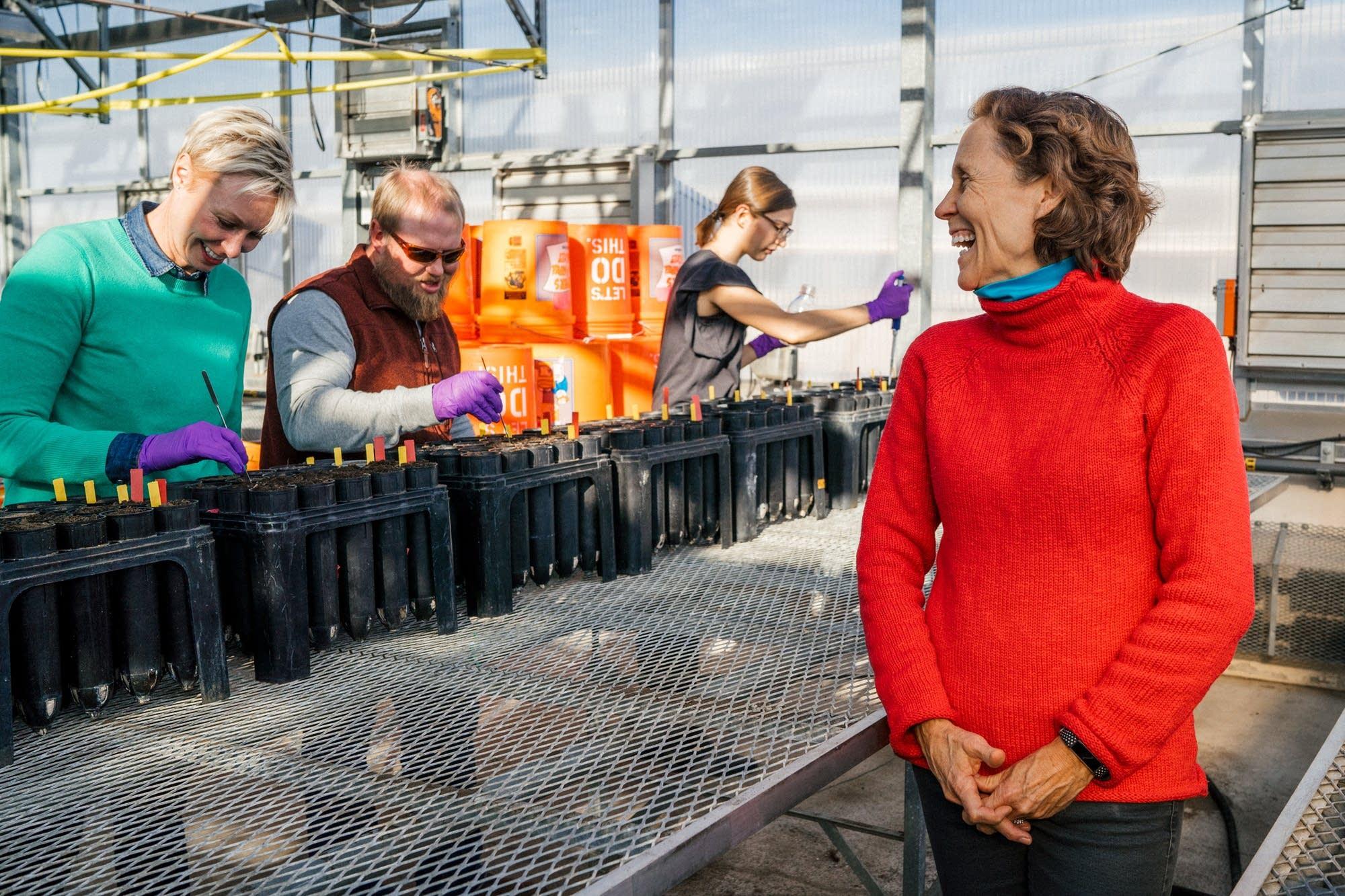 Professor Linda Kinkel Ph.D. watches her researchers prepare an experiment.