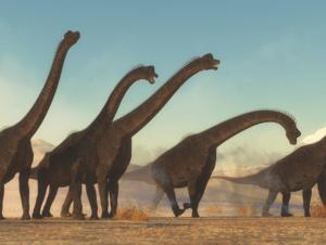 Brachiosaurus Dinosaur Herd