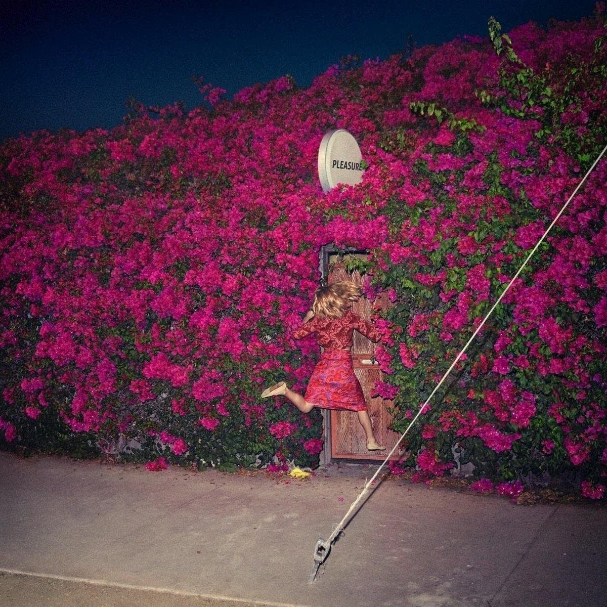 Feist, 'Pleasure'