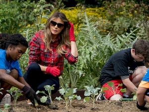 First lady Melania Trump participates in an harvesting and planting event