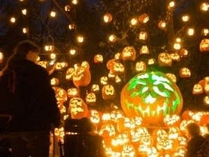 The Jack-O'-Lantern Spectacular takes visitors on a lit path in the woods.