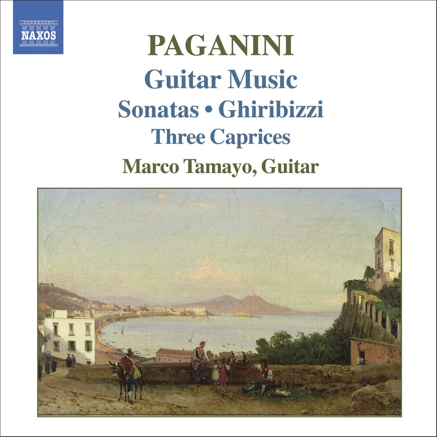 Nicolo Paganini - Grand Sonata in A: I. Allegro risoluto