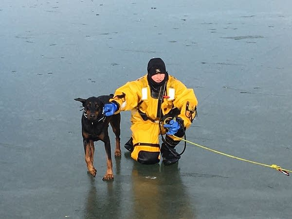 A firefighter in Rochester, Minn., rescues a dog