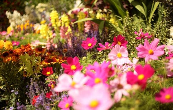 The Annual Hampton Court Flower Show Is In Full Bl