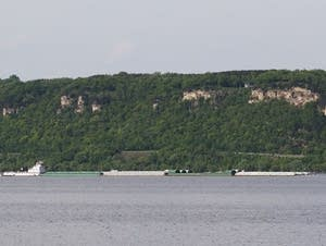 A towboat moves a line of barges on Lake Pepin