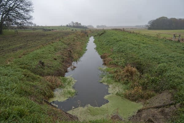 The ditch on Rollie Norton's farmland