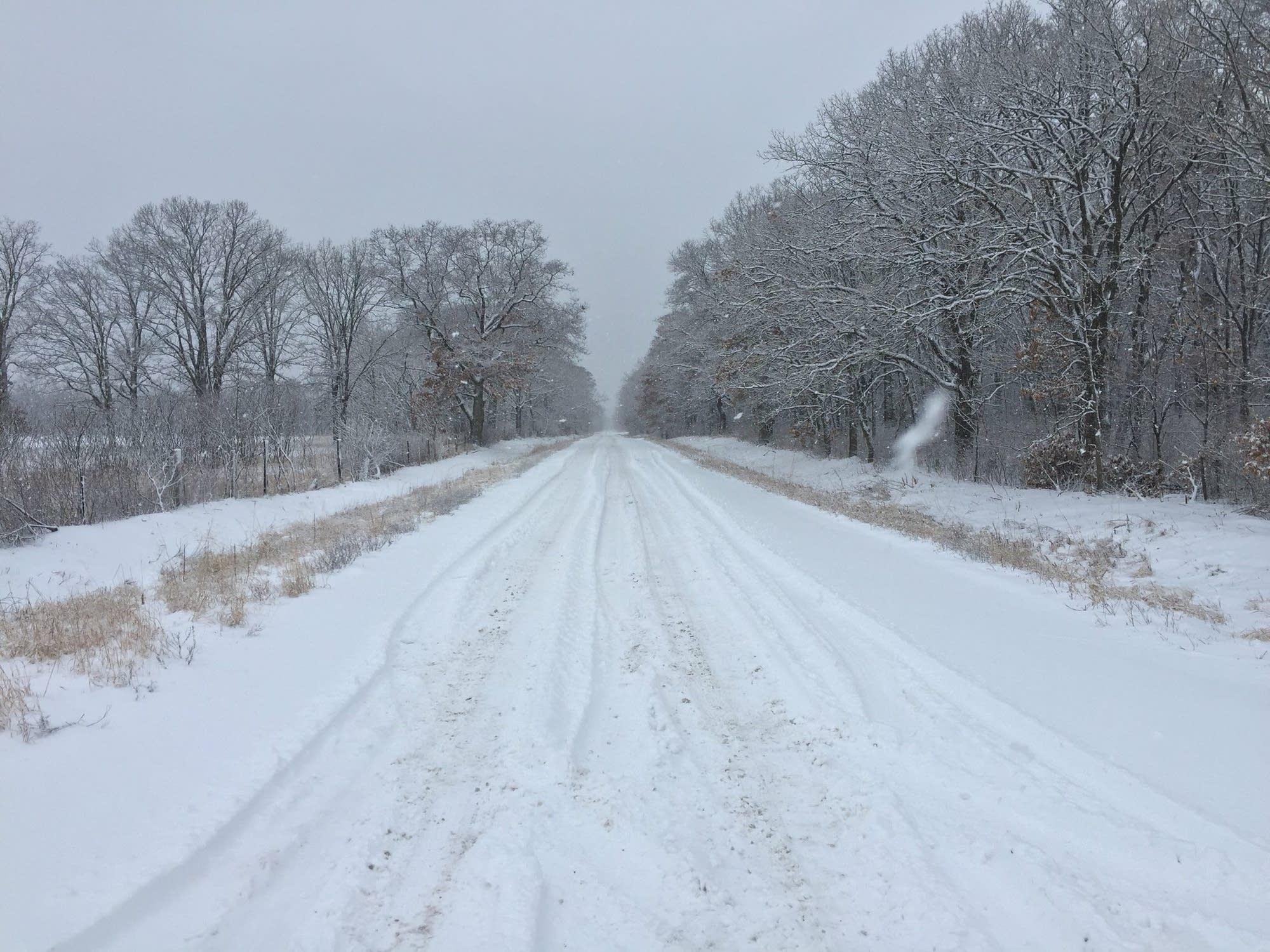 A snowy scene near Fort Ripley, Minn.