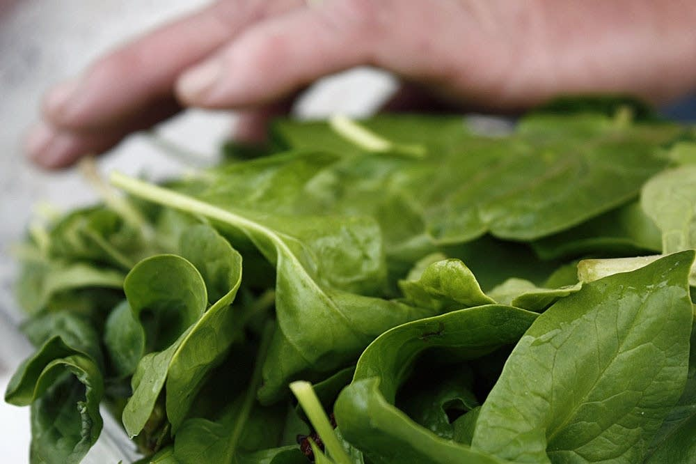 Spinach for sale