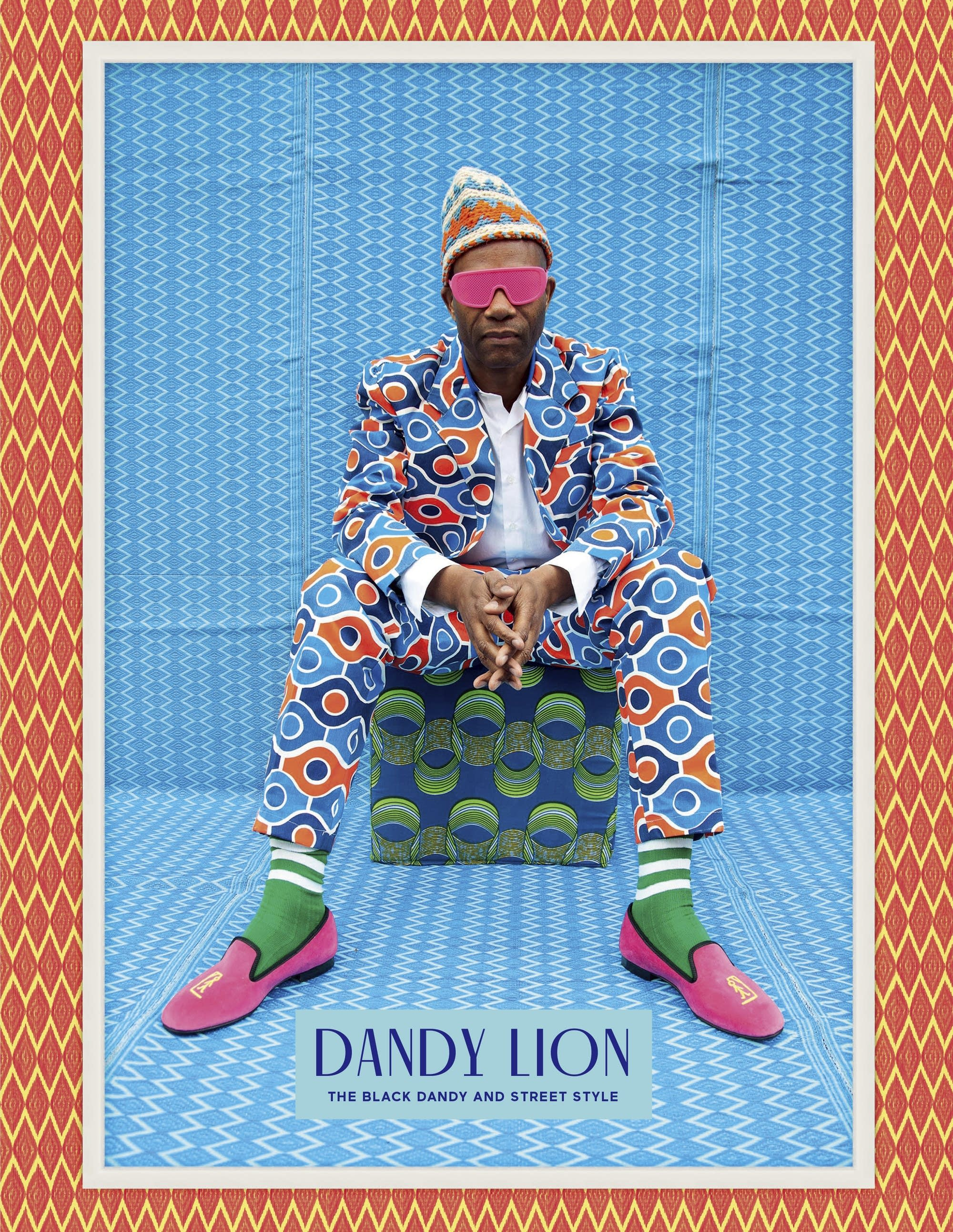 Image result for dandy lion book cover
