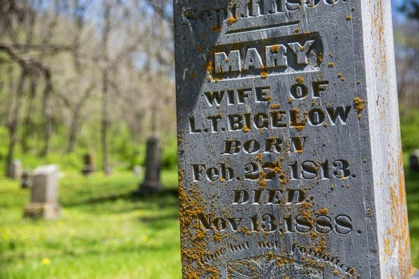 A headstone with lichen on it.