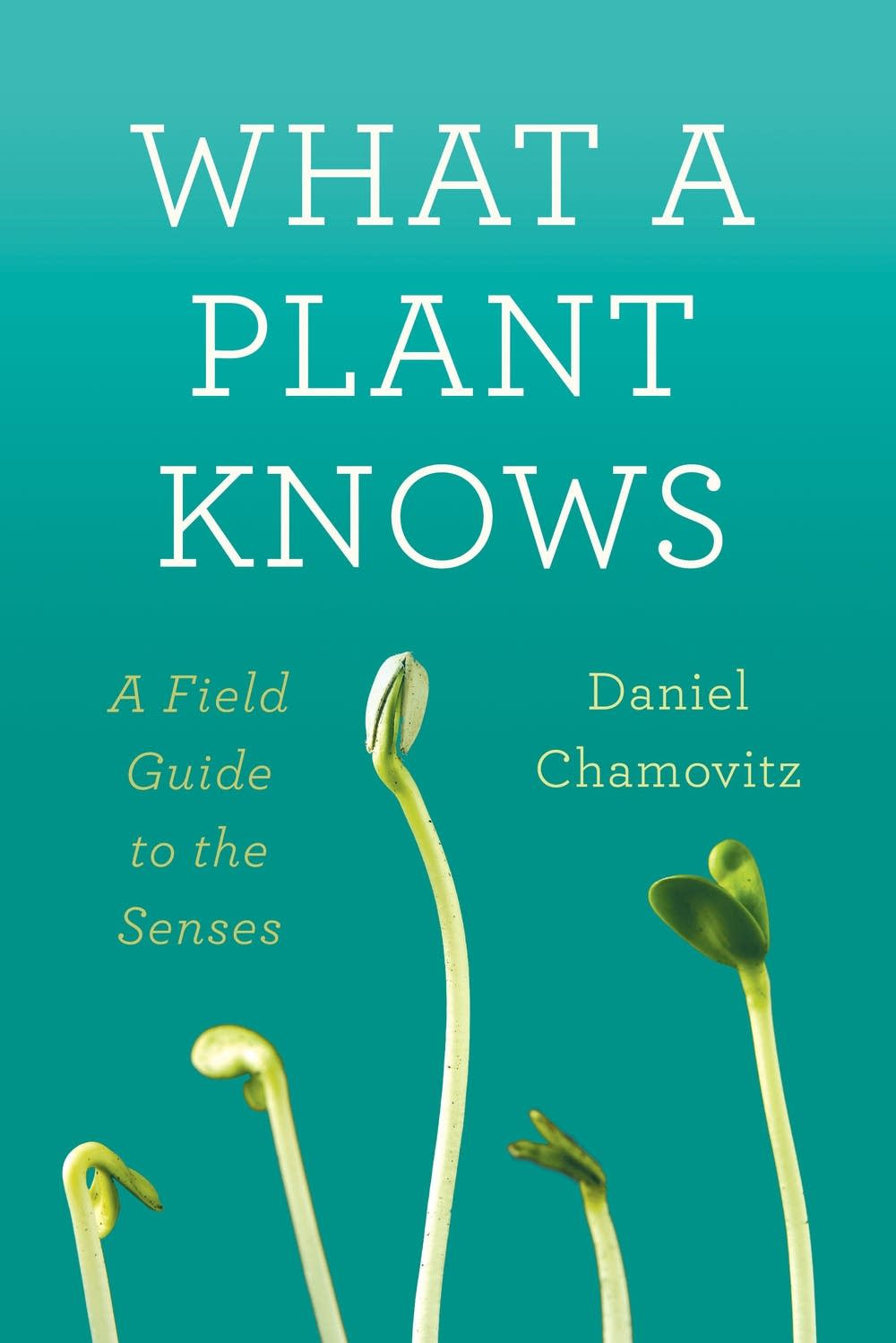 'What a Plant Knows' by Daniel Chamovitz