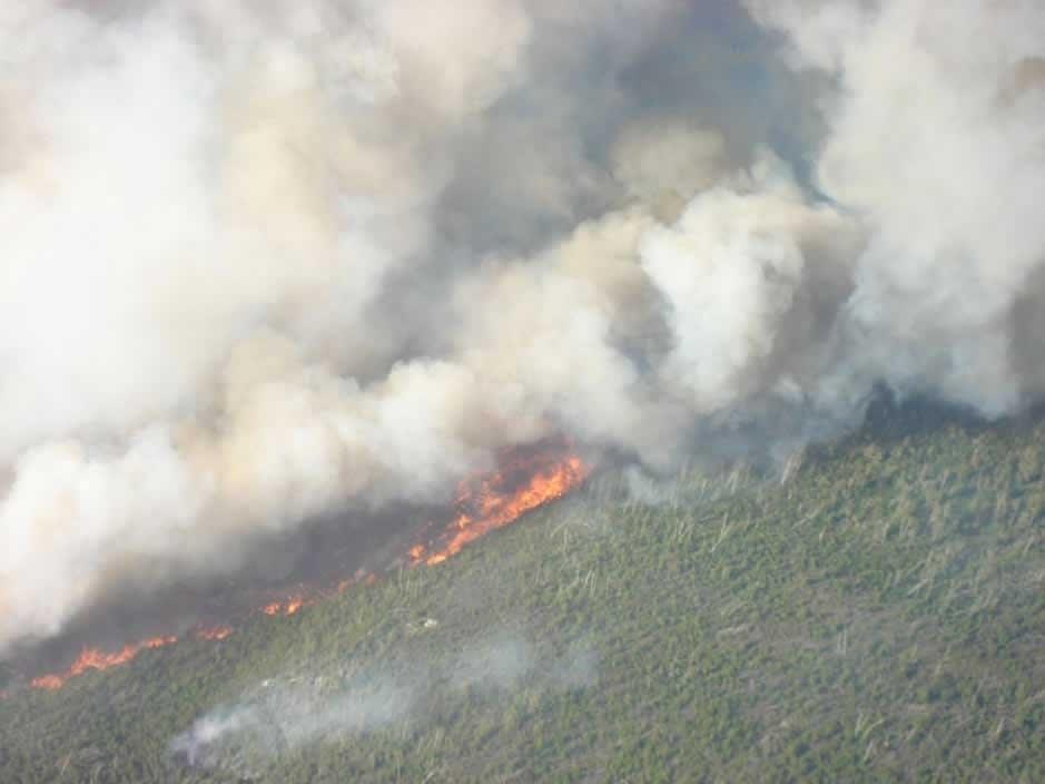 Cavity Lake fire