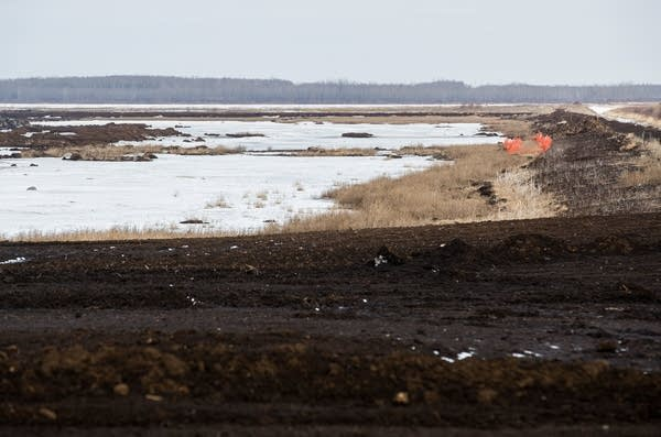 An already excavated portion of the peat bog is undergoing restoration.