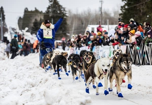 The 36th running of the John Beargrease Sled Dog race gets underway.