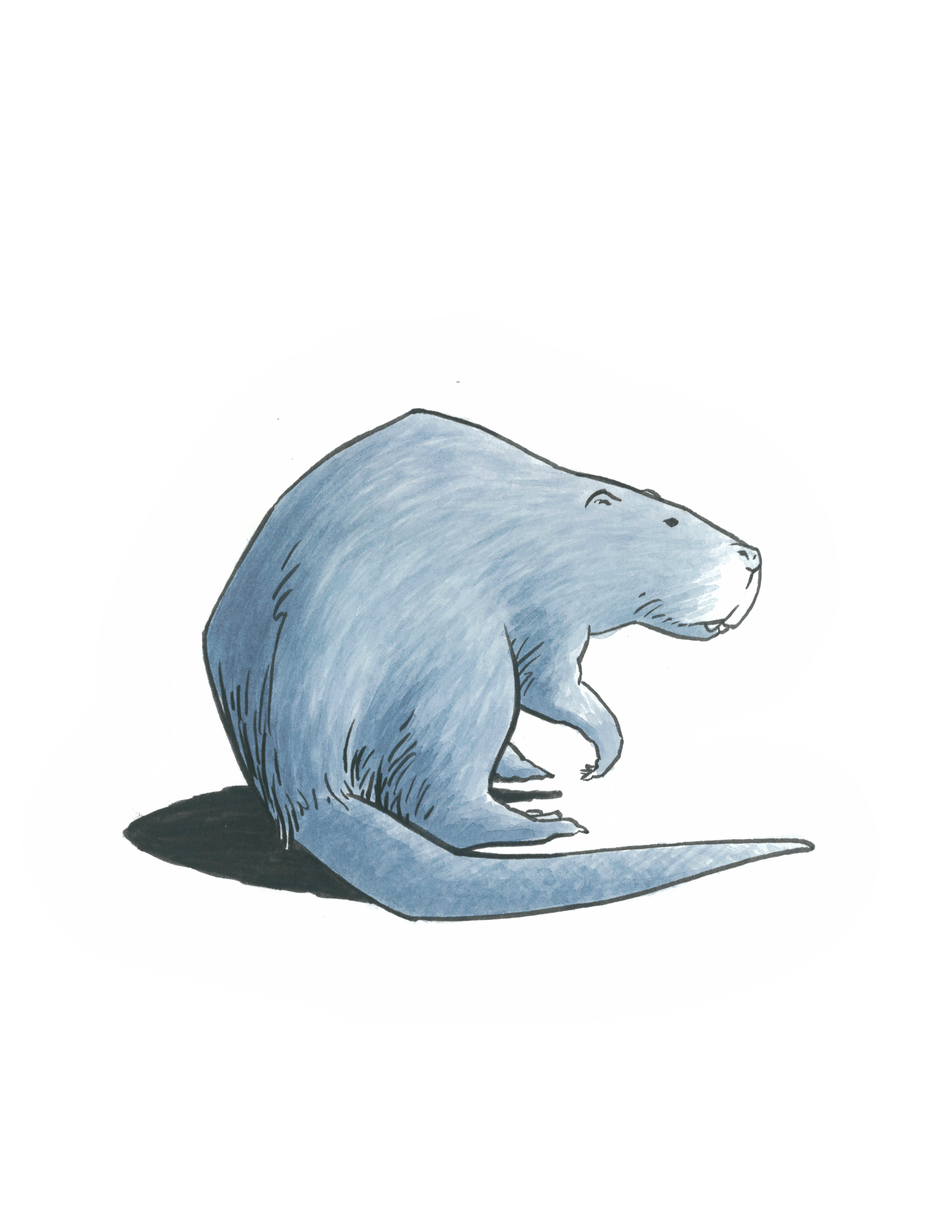 An illustration of a giant beaver