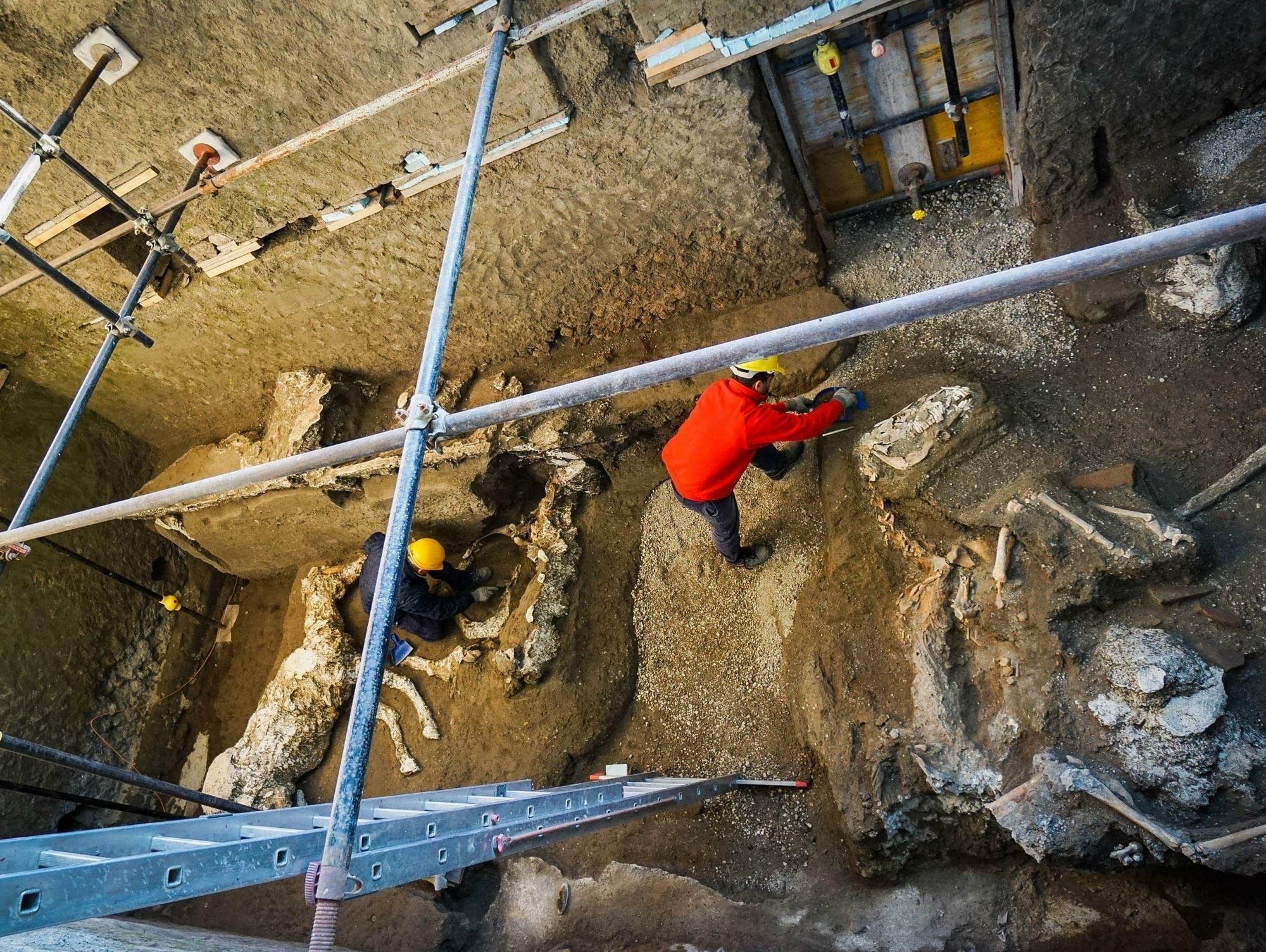 Hasil gambar untuk Petrified horse remains found in stable near Pompeii
