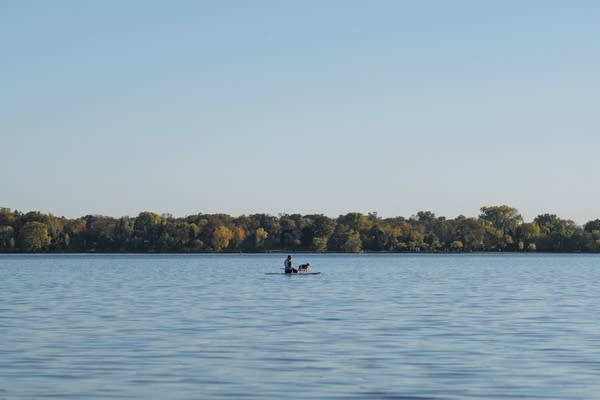 A person and their dog rest on a stand up paddle board.
