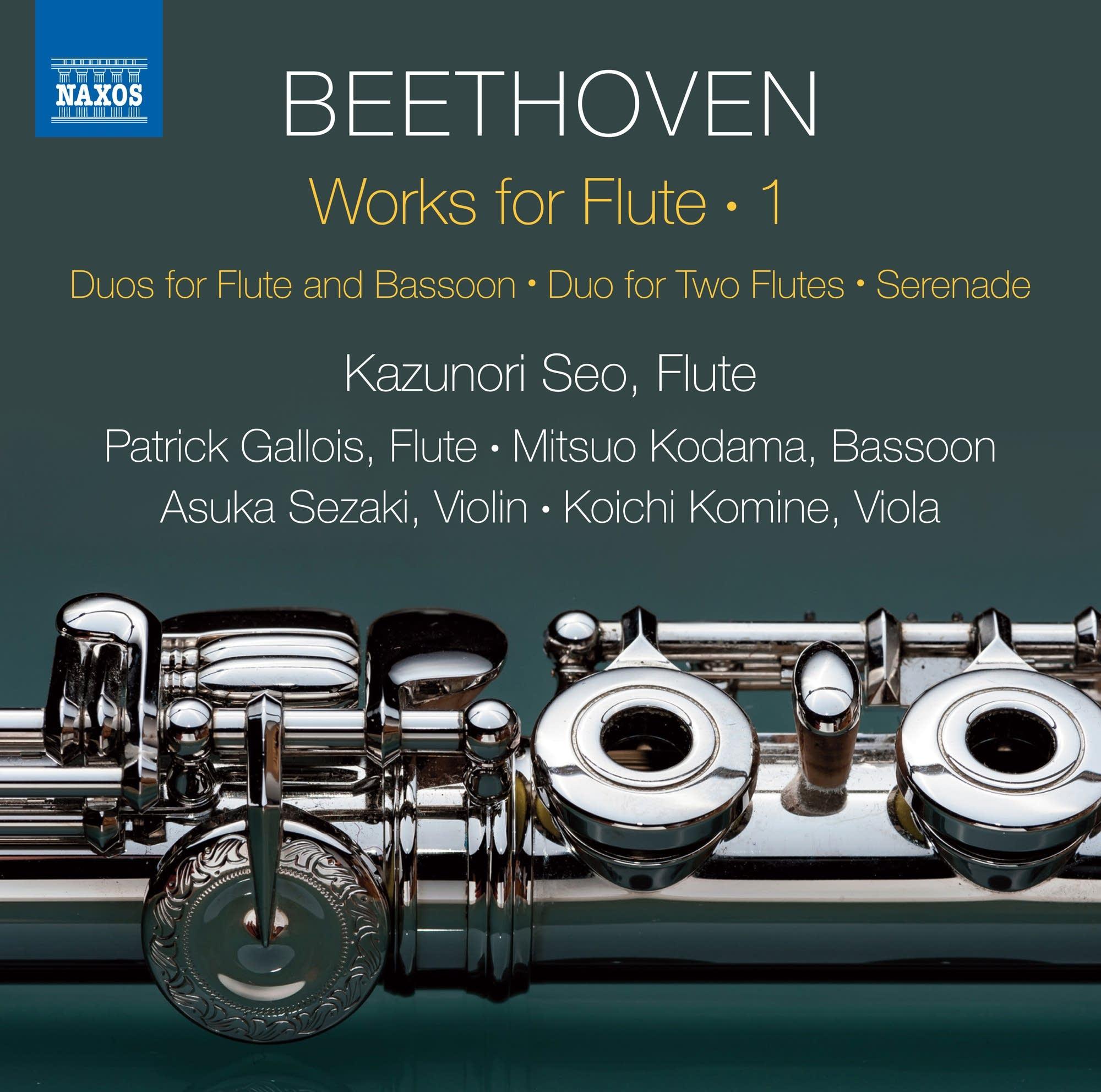 Ludwig van Beethoven - Serenade in D: VI. Adagio
