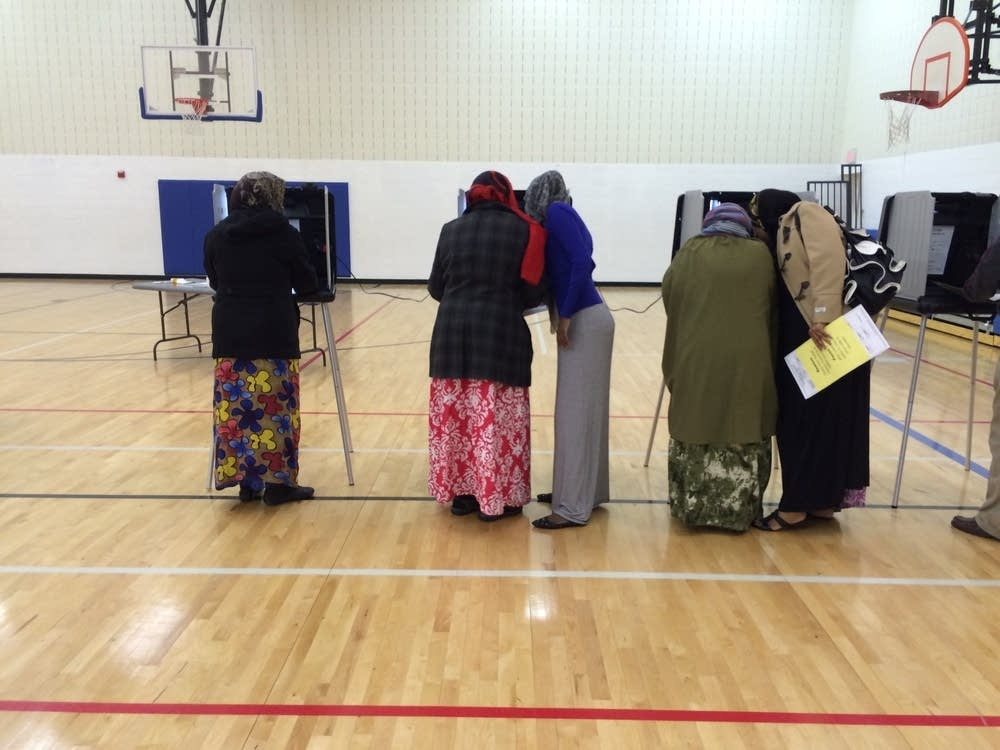 Voters cast ballots
