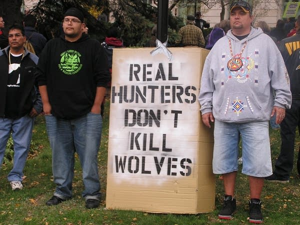 Wolf hunt protest