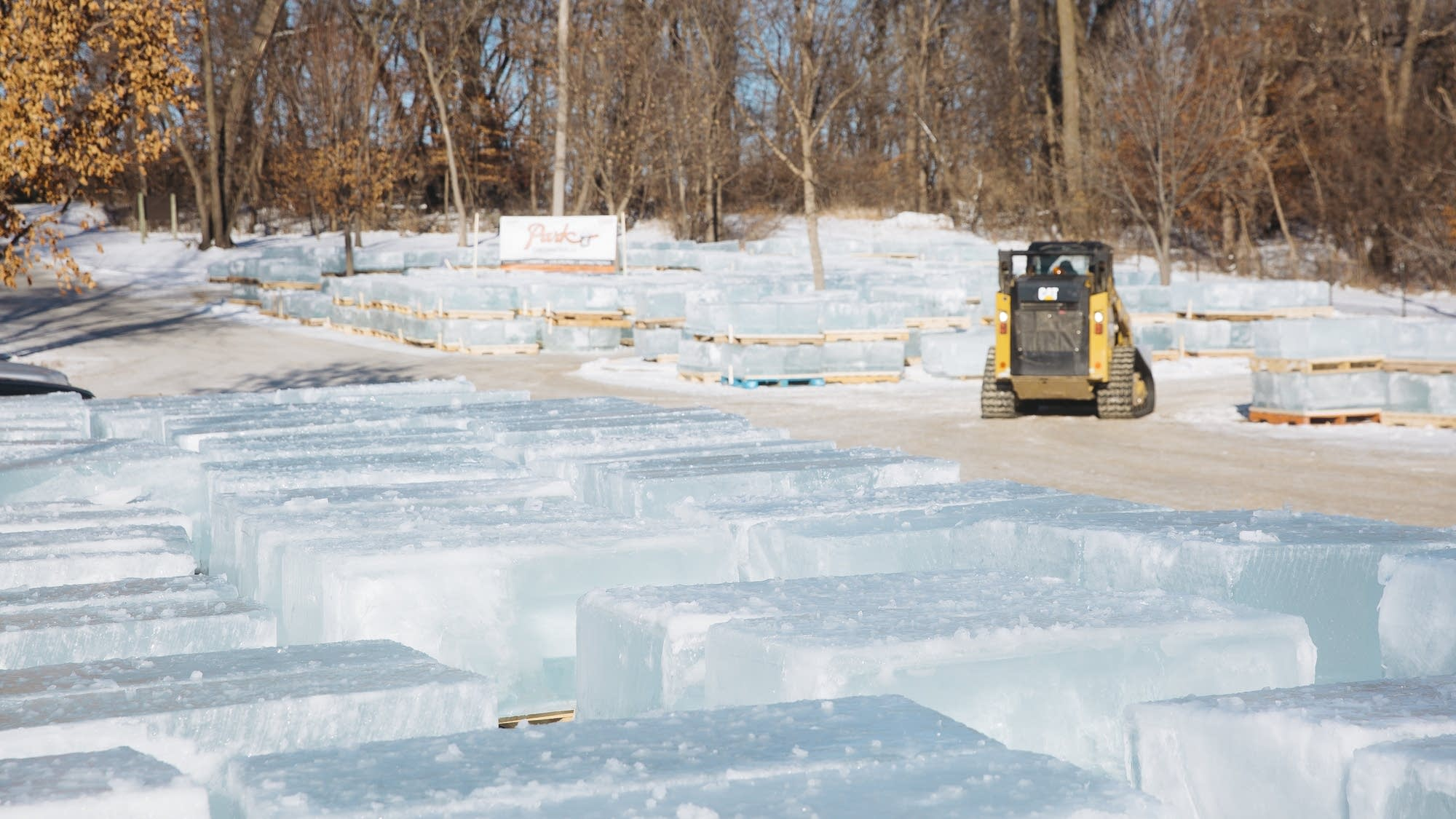 Hundreds of ice blocks wait to be loaded on to semi trucks