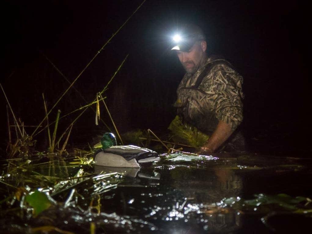 Minnesota duck hunting season opens