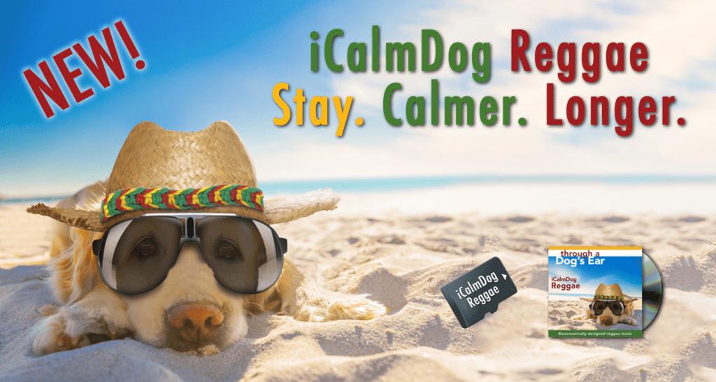 """A poster image of """"iCalmDog Reggae"""""""