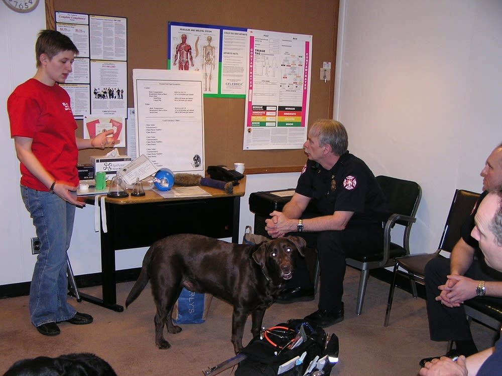 Live animals are used in training