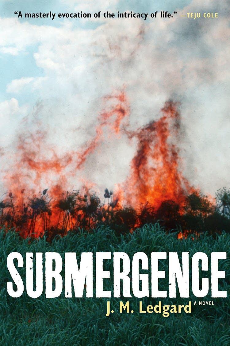 """""""Submergence"""""""