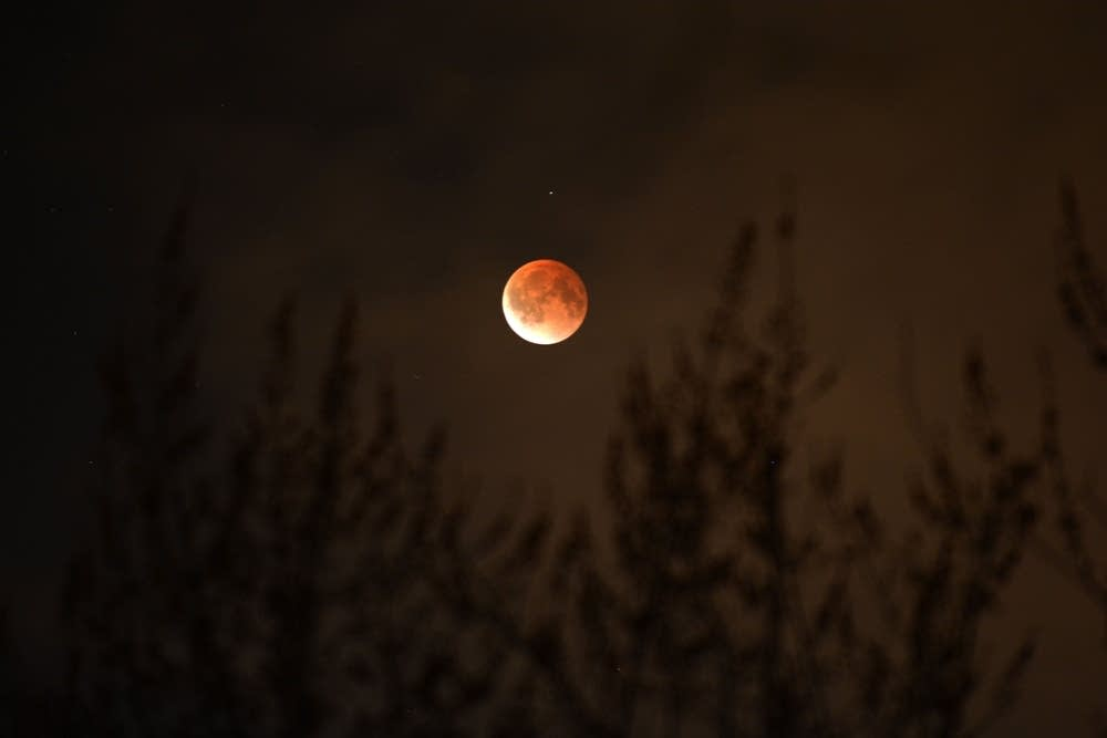 Lunar eclipse in St. Paul