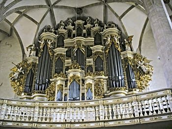 1855 Ladegast organ at Dom, Merseburg, Germany