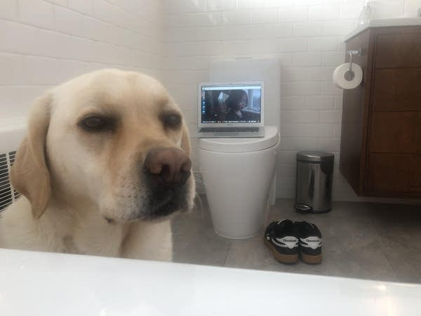 Rudy the PodDog in the bathroom during Luke's bath time.