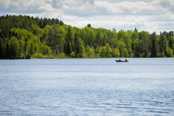 Fishermen in a small boat are on the water with forest in the distance