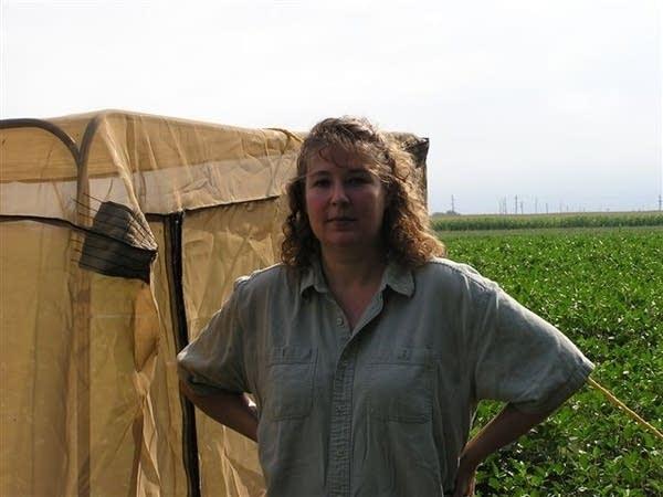 Kelley Tilmon