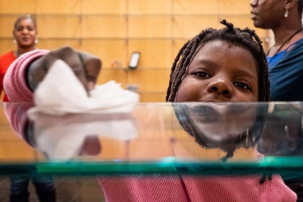 Ten-year-old Savannah Fry helps clean a shelf.