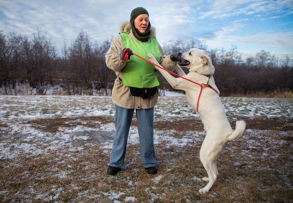 Auggie or Polar Bear plays with volunteer Shari Carlson.