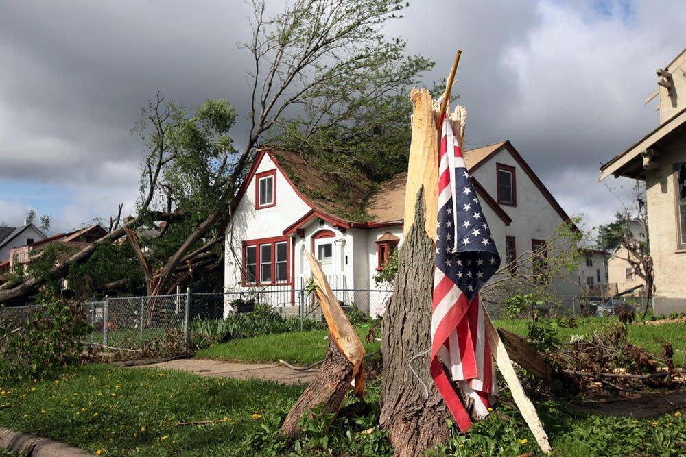 A flag hangs on a torn tree