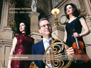 Johannes Brahms - Trio for Violin, Horn and Piano: IV. Finale