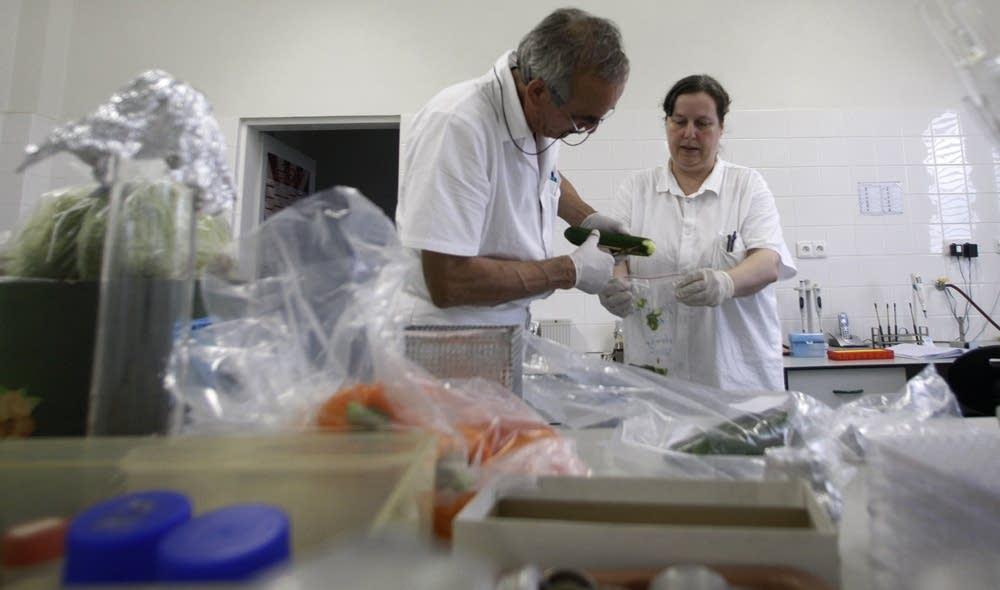 Testing for E. coli