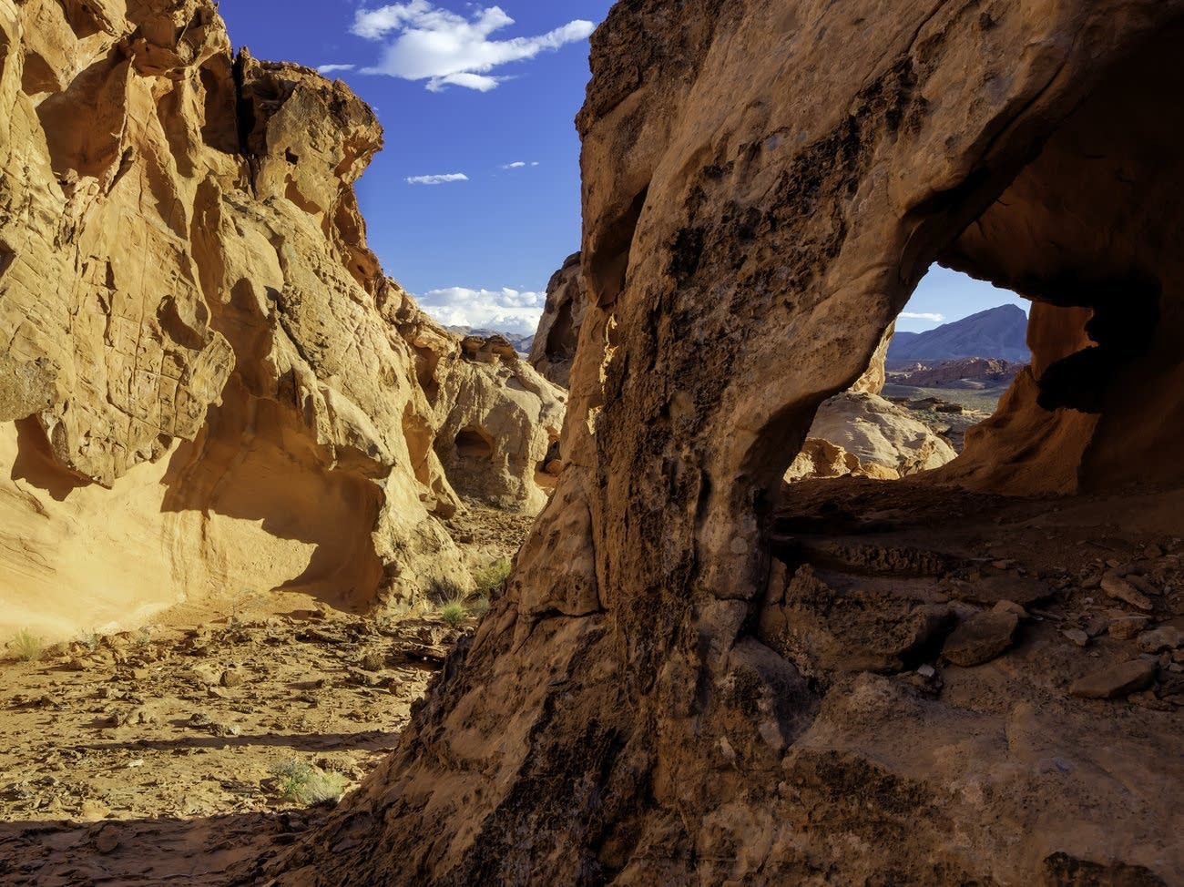 Gold Butte National Monument in Nevada