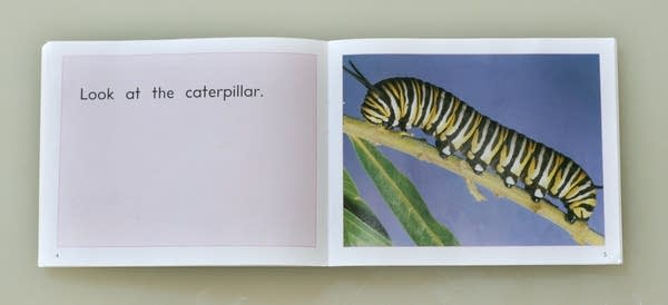 Look at the caterpillar.