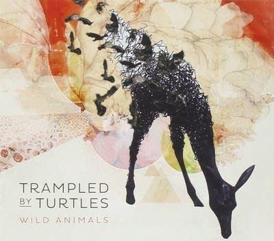 8fdbe8 20140710 trampled by turtles wild animals