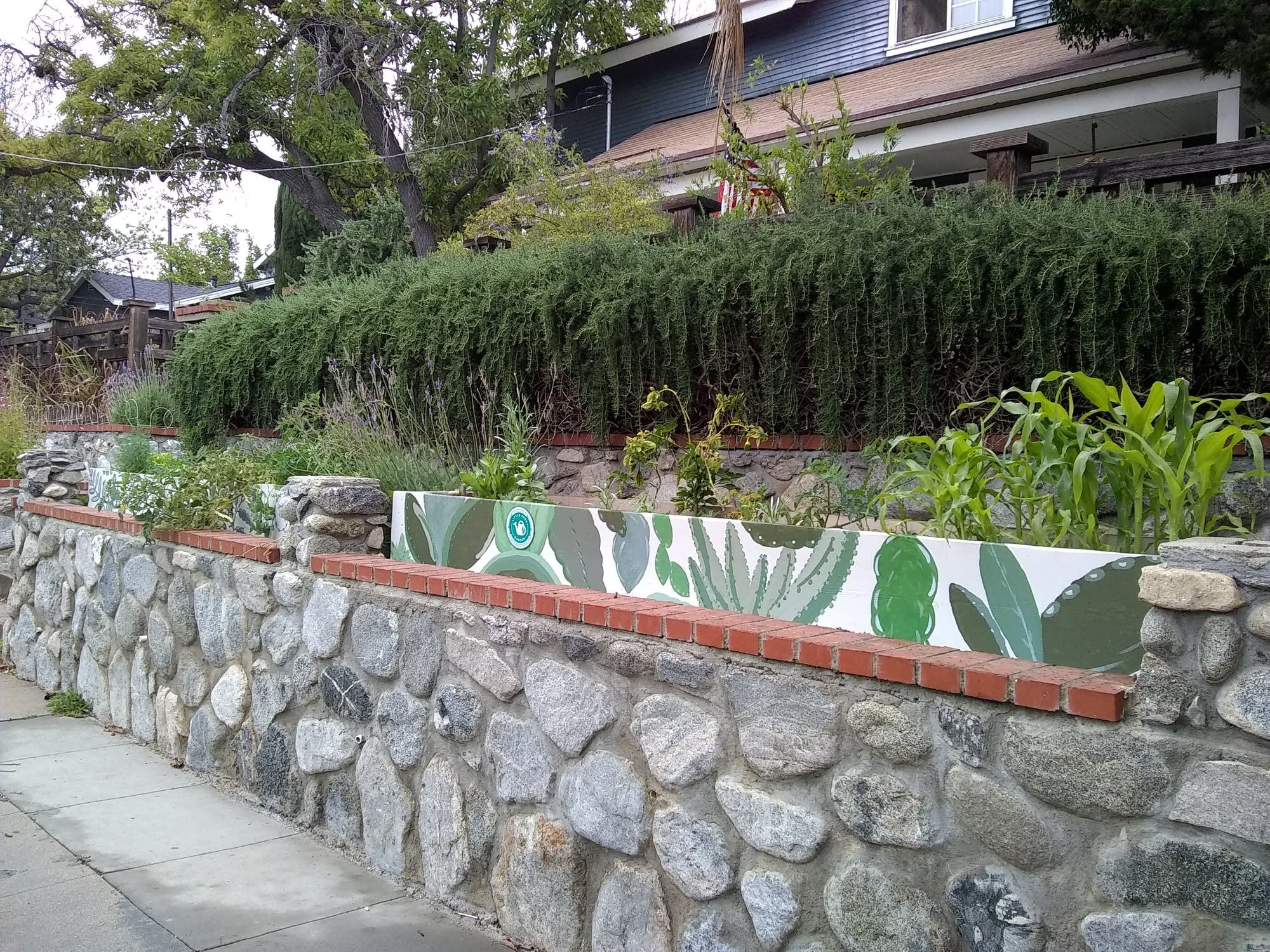 The Little Free Garden in Tina Renzullo's front yard in Pasadena.